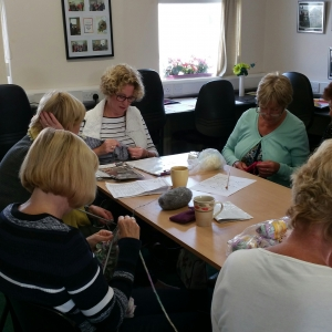 ACCESS Knitting & Crochet Group 2016